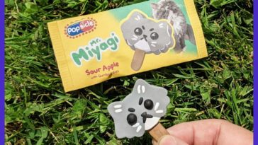 Made this miniature popsicle version of my cat 😾