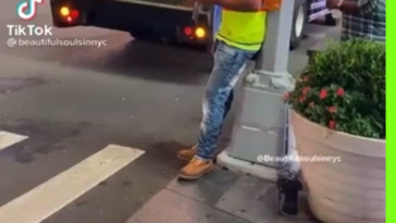 HMB while I clean up the city